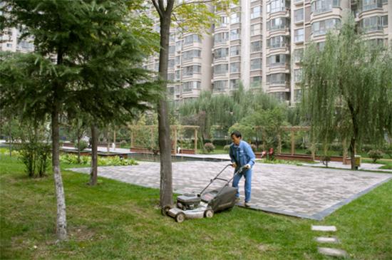 小区物业绿化