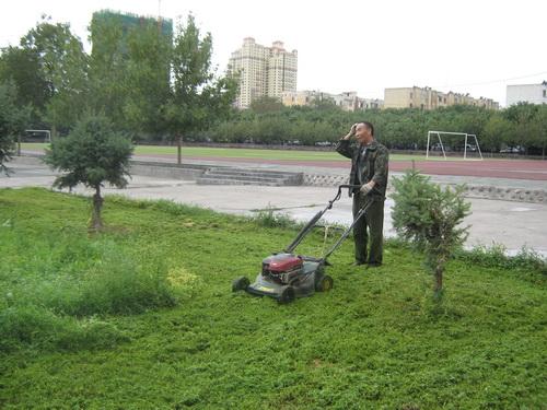 校园绿化外包